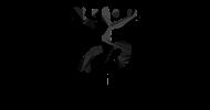 Taiguey-logo